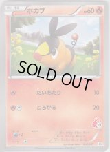 Tepig *Not Holo* 006/037 HS