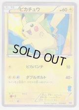 Pikachu 013/034 HSZ