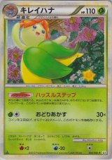 Bellossom 004/080 L2 1st