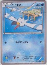 Wingull 017/078 XY6 1st