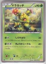 Maractus 006/050 BW5 1st