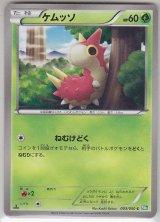 Wurmple 003/050 BW5 1st