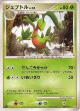 Grovyle 003/017 (Grass&Fire ) Pt 1st