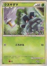 Pineco 003/019 L2 1st