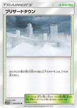 Blizzard Town 049/054 SM10b