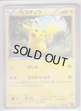 Pikachu 001/010 SNP (R Pack)