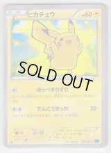 Pikachu 022/060 XY1 1st