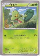 Treecko 003/070 XY5 1st