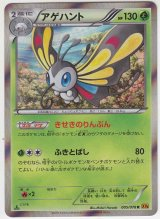 Beautifly 005/078 XY6 1st