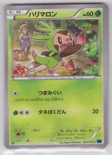 Chespin 005/059 XY8 1st